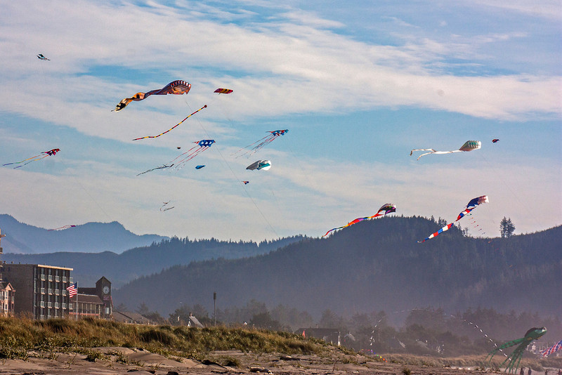 Kite Competition