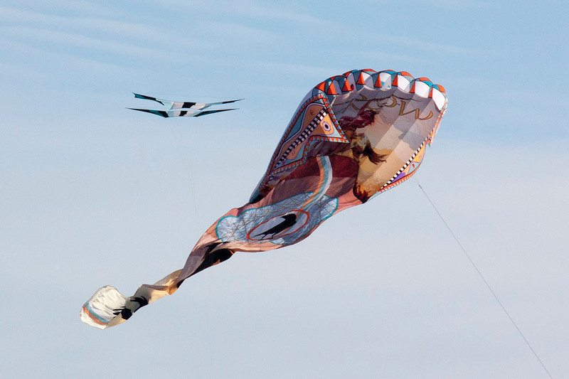 Kite Competition in Oregon