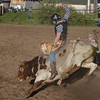 Bull rider at Meadow Vue Ranch near Island Park Idaho on June 21, 2012.