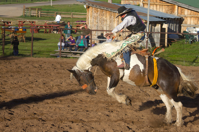 Bucking Horse rider at Meadow Vue Ranch in Island Park, Idaho. June 21, 2012