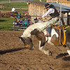 Bucking Horse rider at Meadow Vue Ranch in Island Park, Idaho. June 21, 2012