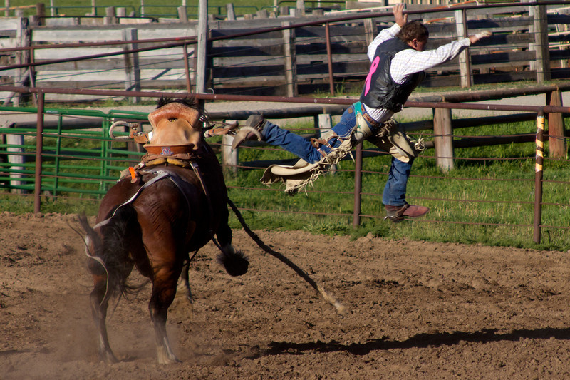 Rodeo bronco rider at Meadow Vue Ranch near Henry's Lake, Island Park, Idaho. June 21, 2012.