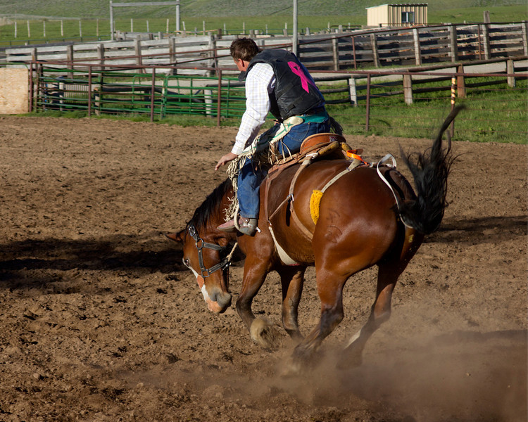 Jeret Angell riding on a bronco at Meadow Vue Ranch, near Henry's Lake in Island Park, Idaho. June 21, 2012.