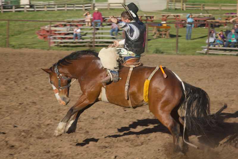 Jeret Angell riding a bronco at Meadow Vue Ranch, near Henry's Lake in Island Park, Idaho. June 21, 2012.