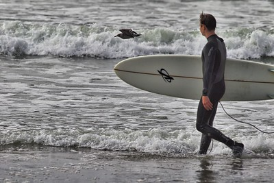 Pacifica surfing2016-09-02