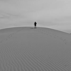 Upward Trek, Bruneau Dunes State Park, Idaho, Square Image, B&W