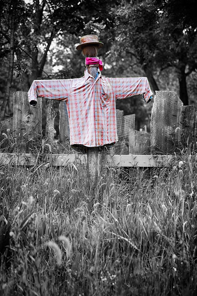 Colorful Scarecrow
