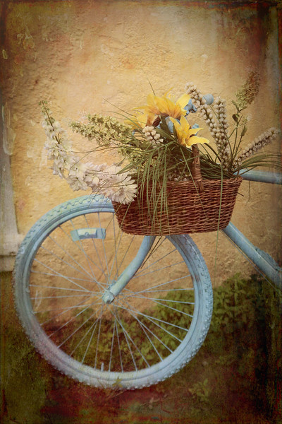 Bohemian Bicycle