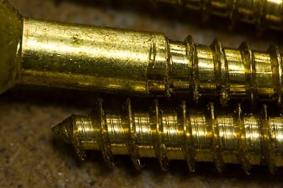 100 mm macro w/ 25mm tube