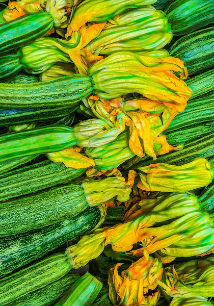 Painterly Zucchini