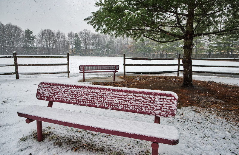 Two Empty Benches In The Snow