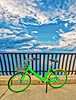 Bicycle On The Bayshore Walkway
