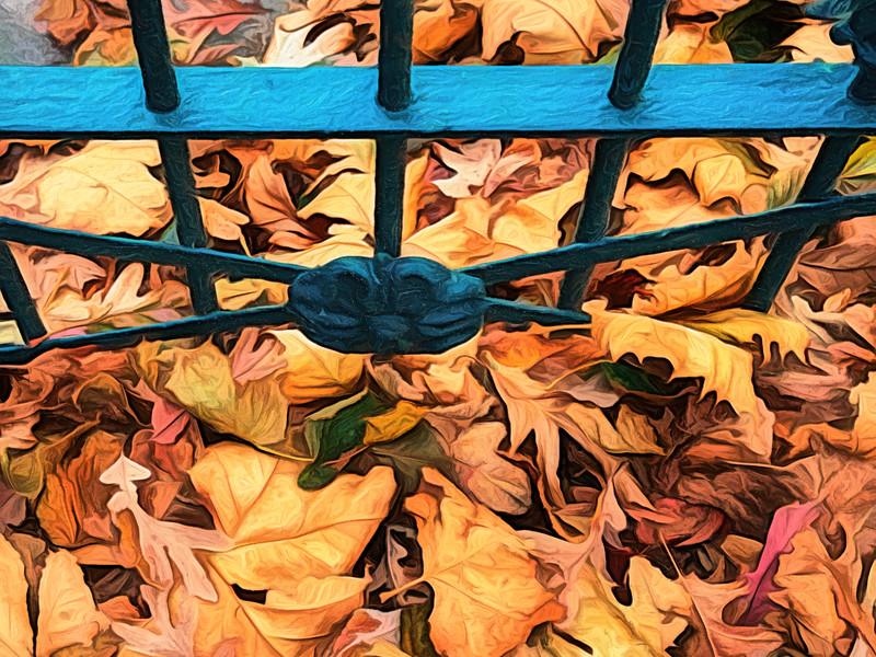Autumn Leaves At The Gate