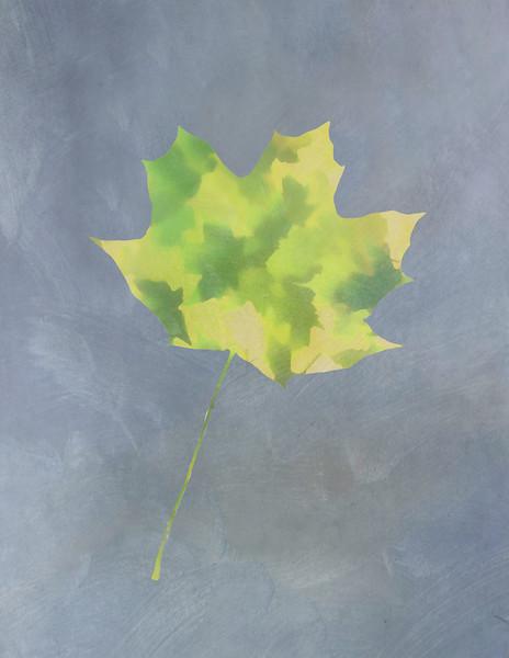 Leaves Through Maple Leaf On Texture 4