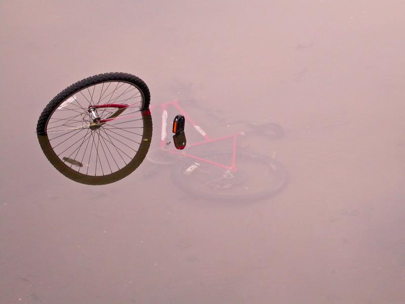 Sunken Bicycle