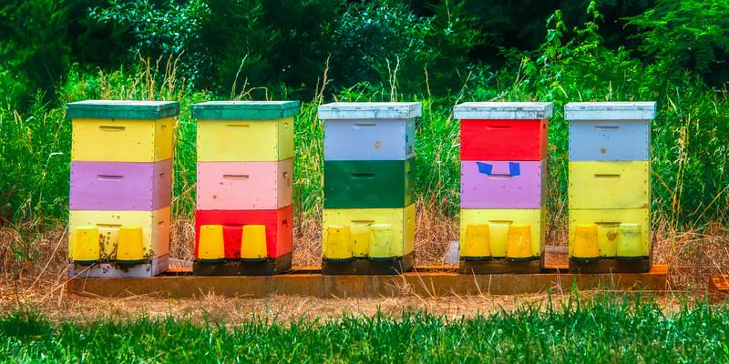 High Density Bee Housing