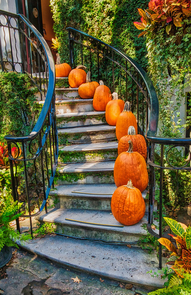 Savannah Pumpkin Steps