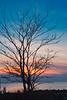 Winter Sunset Silhouette