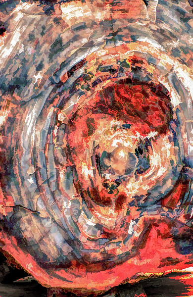Painterly Colorful Abstract Swirl