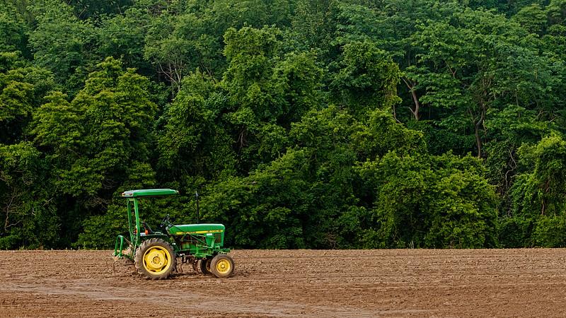 Lonely Tractor In Open Field