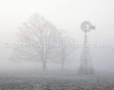 Foggy Winter Farm