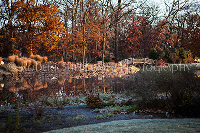 Wellfield Botanical Garden
