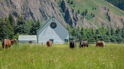 Horse Heaven, Sun Valley, Idaho