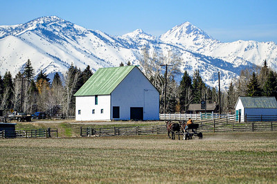 Preparing Fields, Sun Valley, Idaho