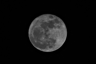 Super Moon, 2011-03-19, B&W, Cropped