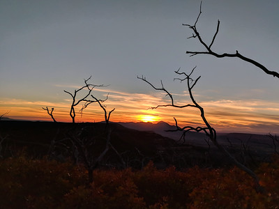 Silhouettes against Ute Mountain, Mesa Verde