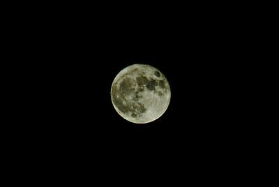 Super Moon, Extraordinaire, 2016