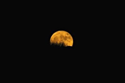 Super Moon, Peek-a-Boo, 2016, with Vibrance