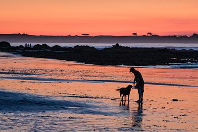 BK-Asilomar_Beach-Man&Dog-111508