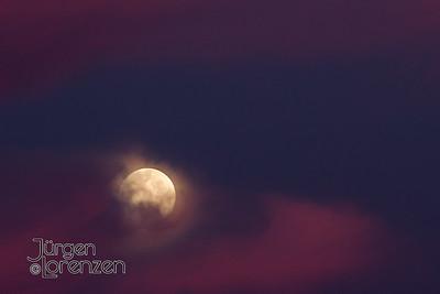 Moonset Violet