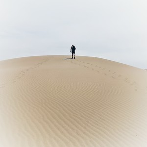 Upward Trek, Color, Bruneau Dunes State Park, Idaho, Square Image