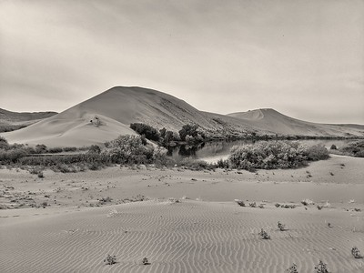 Main Dune, Bruneau Dunes State Park, Sepia