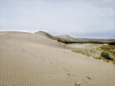 Sand Dune Ripples, Bruneau Dunes State Park, Idaho