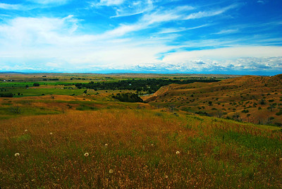 Deep Ravine Vista, Little Bighorn