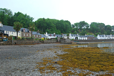 Plockton on Loch Carron, Low-tide & Palm Trees!