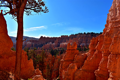 Near, Far, In-Between at Bryce