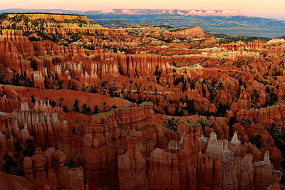The Sunset Hour at Bryce Canyon