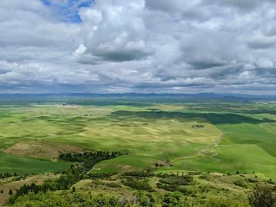 Palouse Hills, View 2 to Idaho's Clearwater Mountain Range, Steptoe Butte, Washington