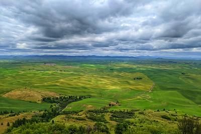 The Palouse Hills from Steptoe Butte, Washington