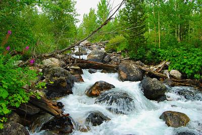Taggart Creek Cascades