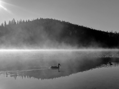 Sibley Lake Morning Welcome