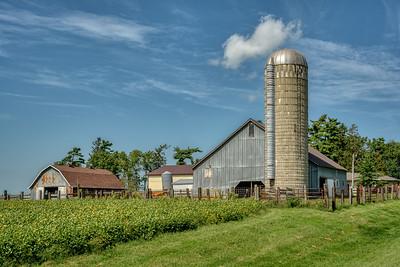 Old Barns, Center State, Iowa