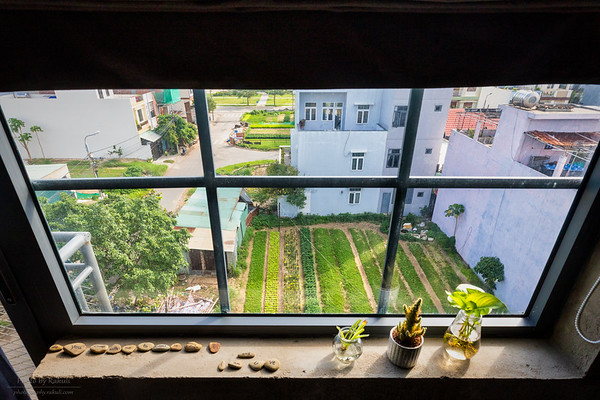 Natural Windowsill
