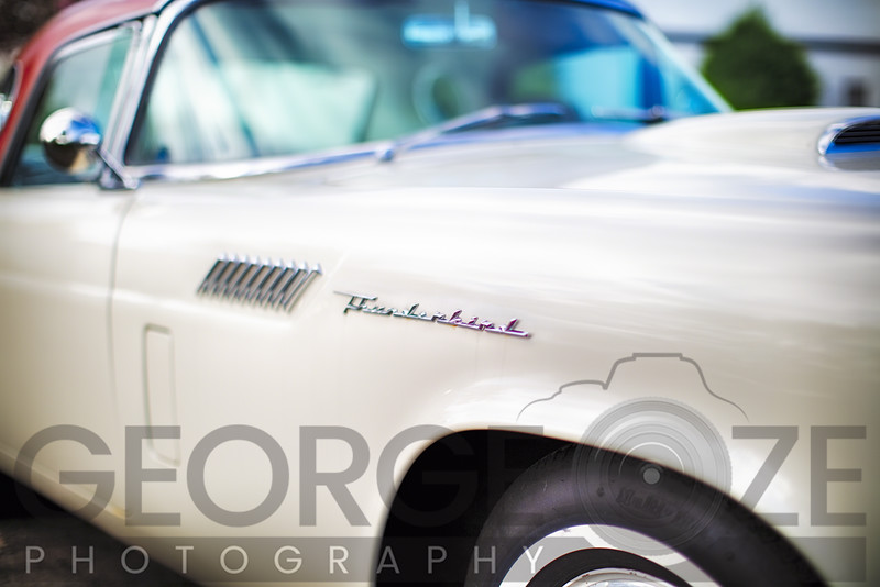 Fender with Scripts of a Classic Ford Thunderbird Automobile
