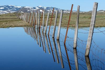 Camas Prairie Spring, Idaho