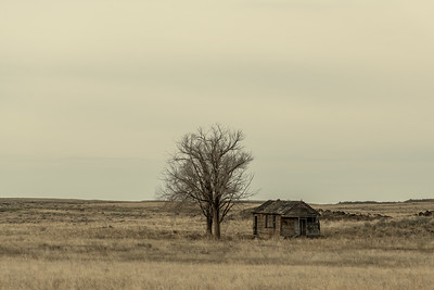 Homestead on Silver Creek, Idaho